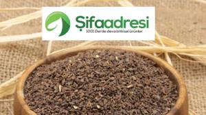 Üzerlik tohumu faydaları nelerdir?